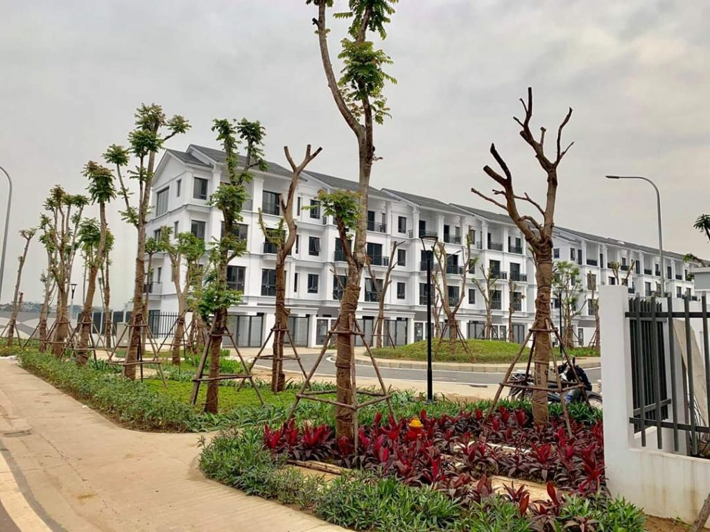 Liền kê St5 Gamuda Dahlia Homes