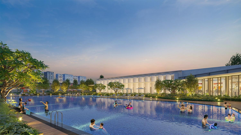 Bể bơi  dự án Hinode Royal Park